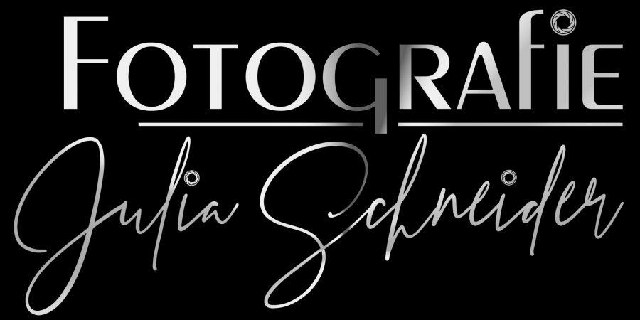 Logo_Schwarz_Silber
